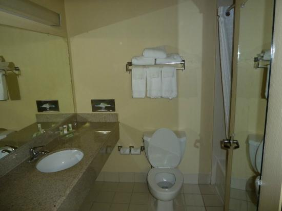 Country Inn & Suites By Carlson, Houston Intercontinental Airport South : Bad