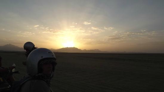 sunset with falco safari