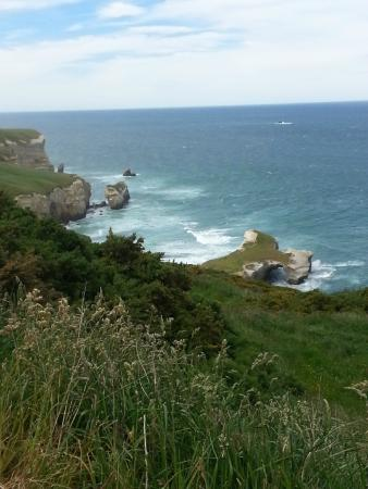 Tunnel Beach Track : view from the top of the walk