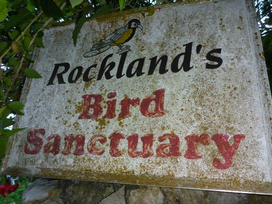 Rocklands Bird Sanctuary: Out of the way but a great experience