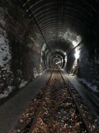 Ohikage Tunnel Walkway : トンネルの中