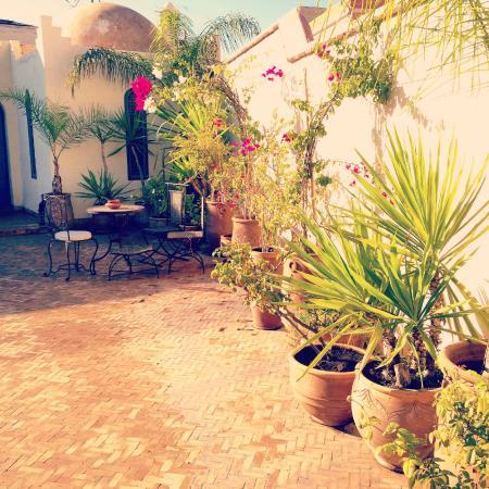 Riad Sahara Nour : Terrace