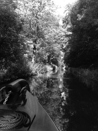 ‪‪Llangollen Canal‬: Off the bow‬