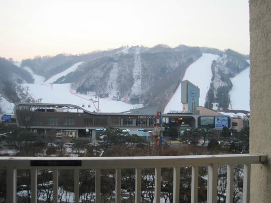 Daemyung Resort Vivaldi Park: the view from room balcony.