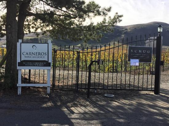 Schug Carneros Estate Winery: Entry