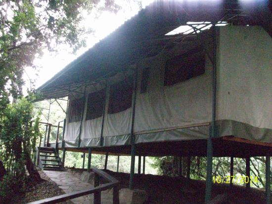Sekenani Camp: Tent #2 (the best I think)