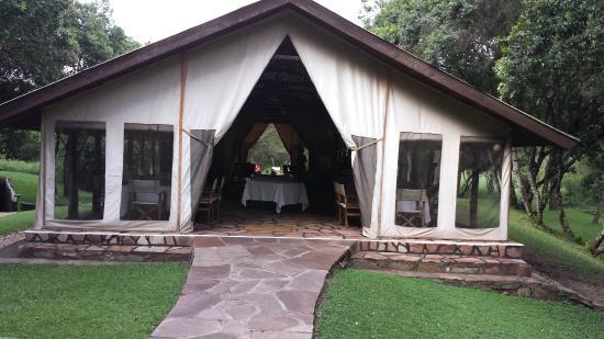 Sekenani Camp: Dining room/lounge daytime