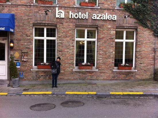Azalea Hotel: Entrata