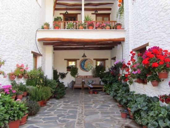 Hotel Estrella de las Nieves: Entrada