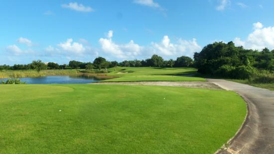Beautiful course! - Picture of Hard Rock Golf Club, Punta ...