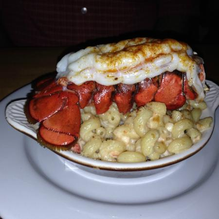 The Lobster Pot Bistro: Bistro's own Lobster Mac & Cheese with a full Tail!