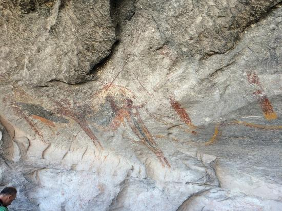 Seminole Canyon State Park and Historic Site: Pictographs