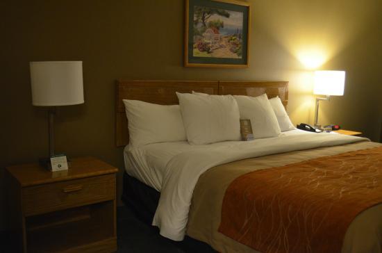 Comfort Inn: Cama confortavel