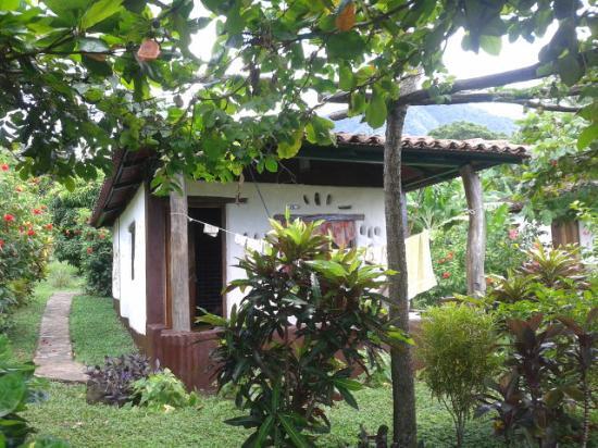 Finca Mystica: cabin