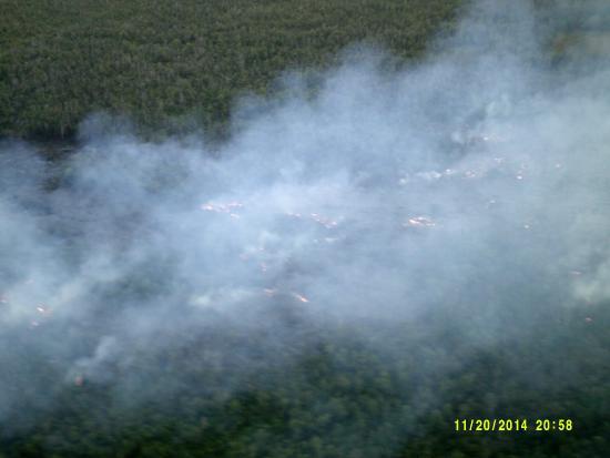 Big Island Air: Tree afire as lave heads to Pahoa