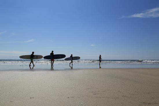 Blue Trailz Hostel & Surf Camp: Surf