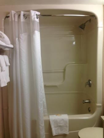 Holiday Inn Toronto Bloor Yorkville: dated bathroom