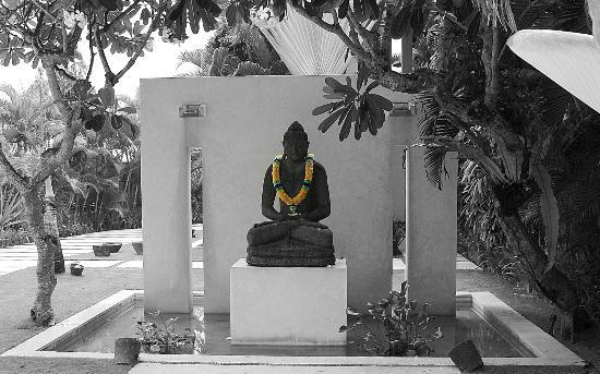 Shalimar Villas: buddha