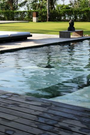 Shalimar Villas: pool