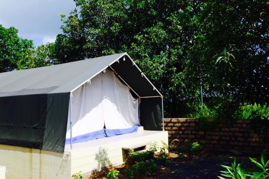 Dwarkadhish Resort Eco Friendly Tent & Eco Friendly Tent - Picture of Dwarkadhish Resort Sasan Gir ...