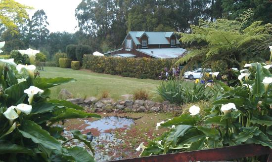 Gracehill Accommodation : View across the garden to The Barn