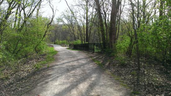 Al Foster Memorial Trail: typical bridge