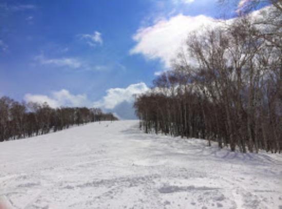 Rusutsu Resort Ski: ゲレンデ