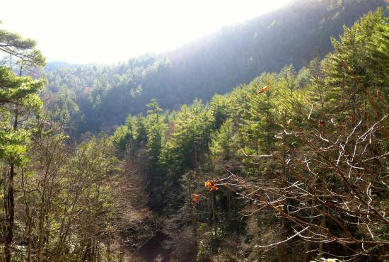Glen Falls: beautiful mountain scenery from the first overlook