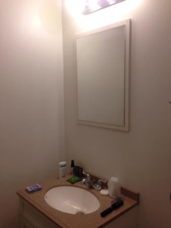Moosehead Trail Motor Lodge: Bathroom - small counter space, no hair dryer, but hot water!