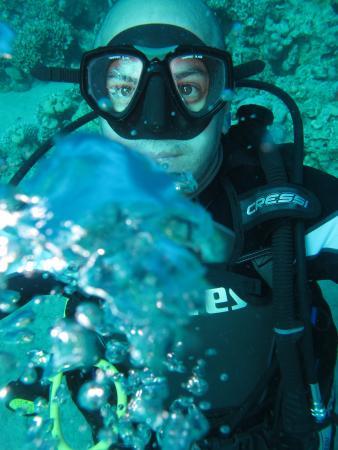 Mr Frogman Dive Center: Japan
