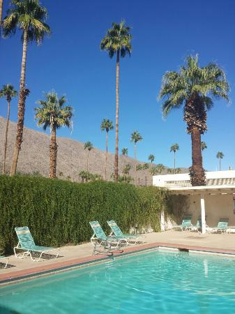 Knights Inn Palm Springs: I definitely enjoyed the pool area of the hotel.