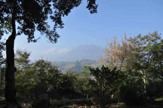Locanda dell'Istrice : colline intorno a Camerino
