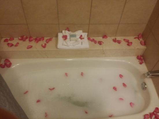 Bubble Bath - Picture of Omni Dallas Hotel at Park West, Dallas ...