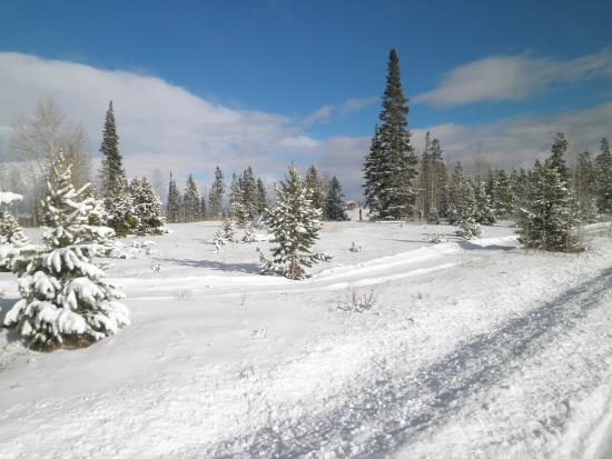 Snow Mountain Ranch: Quiet Beauty
