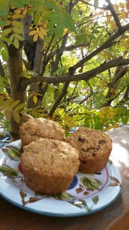 Crowsnest Cafe and Fly Shop: yummy fall muffins
