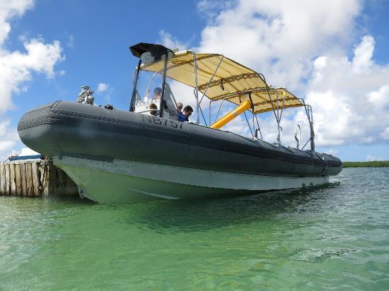 Bonaire East Coast Diving