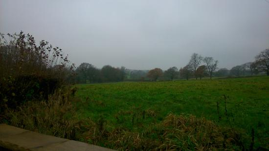 Hayeswood Lodge Boutique Bed & Breakfast: View around the grounds