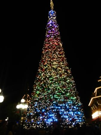 Christmas In Disneyland Hong Kong.Christmas Tree Picture Of Hong Kong Disneyland Hong Kong
