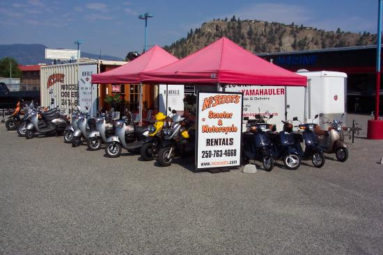 ‪McScoot's Motorcycle and Scooter Rentals‬