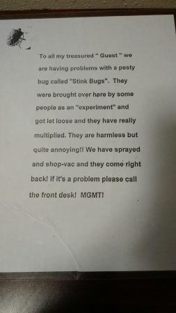 Red Roof Inn Roanoke - Troutville: Note in room about stink bug problem. I didn't see any.