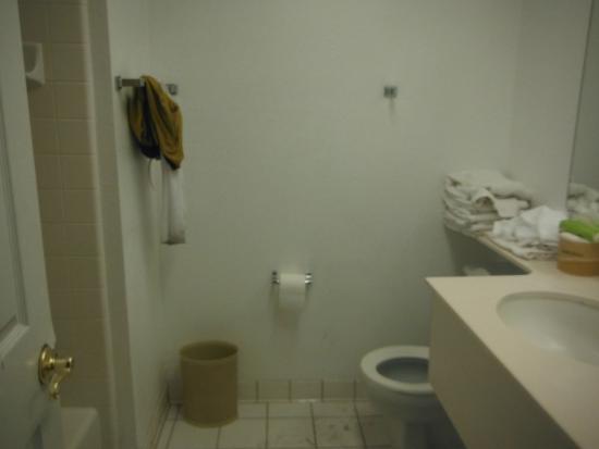 Blue Jay Lodge: Very small bathroom