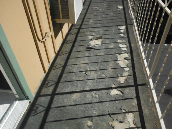 Blue Jay Lodge: DISGUSTING WALKWAY OUTSIDE HOTEL - bugs crawl on it, very old, narrow (always hit suitcases on A