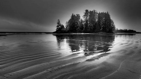 Tofino Trek Inn: Low Tide at Schooner Cove
