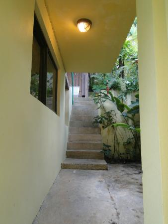 Sue's Place: There are some stairs to get to/from the loft - be aware