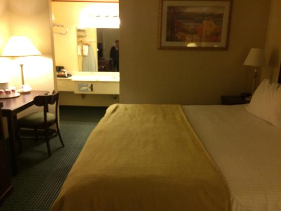 Rodeway Inn & Suites - New Hope : Room with king bed