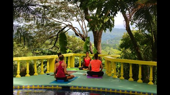 Surf Bikini Retreat : Yoga on the patio with incredible mountain views