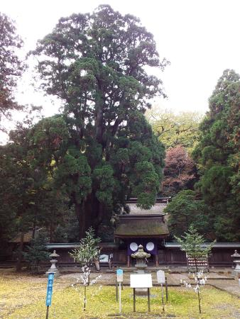 Wakasahime Shrine