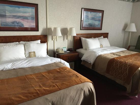 كومفرت إن: View 1 of the room