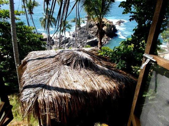 Cocos Camp: View from cabin
