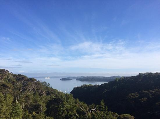 The Sanctuary @ Bay of Islands : Good morning! view from the deck at breakfast.